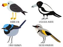 Διανυσματική απεικόνιση του ειρηνικού γλάρου κινούμενων σχεδίων πουλιών, ελεύθερη απεικόνιση δικαιώματος