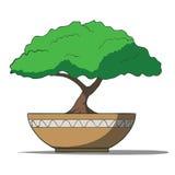 Διανυσματική απεικόνιση του ζωηρόχρωμου δέντρου μπονσάι Στοκ Εικόνες