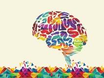 Διανυσματική απεικόνιση του ζωηρόχρωμου εγκεφάλου Στοκ εικόνες με δικαίωμα ελεύθερης χρήσης
