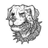 Διανυσματική απεικόνιση του κακού τρελλού σκυλιού Στοκ εικόνα με δικαίωμα ελεύθερης χρήσης