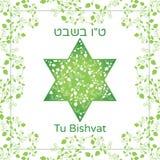 Διανυσματική απεικόνιση των εβραϊκών διακοπών Δαβίδ Star με τα φρούτα ροδιών, κλάδοι για τη ευχετήρια κάρτα ή την αφίσα Κείμενο T Στοκ φωτογραφία με δικαίωμα ελεύθερης χρήσης