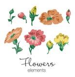 Διανυσματική απεικόνιση των ζωηρόχρωμων στοιχείων λουλουδιών Στοκ Εικόνες