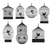 Κλουβιά πουλιών Στοκ εικόνα με δικαίωμα ελεύθερης χρήσης