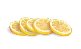 Διανυσματική απεικόνιση των ρεαλιστικών κίτρινων φρέσκων φετών λεμονιών στο άσπρο υπόβαθρο Στοκ εικόνα με δικαίωμα ελεύθερης χρήσης