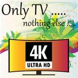 Διανυσματική απεικόνιση - υπόβαθρο με τα λουλούδια, 4K TV Στοκ Εικόνα