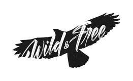 Διανυσματική απεικόνιση: Χειρόγραφη εγγραφή βουρτσών άγριος και ελεύθερος στη σκιαγραφία του πετώντας υποβάθρου γερακιών στοκ φωτογραφίες με δικαίωμα ελεύθερης χρήσης