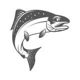 Διανυσματική απεικόνιση ψαριών σολομών στο μονοχρωματικό εκλεκτής ποιότητας ύφος Στοιχεία σχεδίου για το λογότυπο, ετικέτα, έμβλη Στοκ Εικόνες