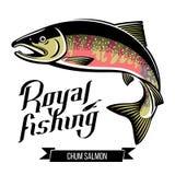 Διανυσματική απεικόνιση ψαριών σολομών Chum Στοκ φωτογραφία με δικαίωμα ελεύθερης χρήσης