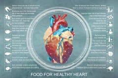 Διανυσματική απεικόνιση infographic Τρόφιμα για την υγιή καρδιά Στοκ Φωτογραφίες