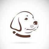 Διανυσματική εικόνα ενός κεφαλιού σκυλιών του Λαμπραντόρ Στοκ Φωτογραφία