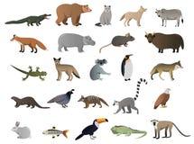 Διανυσματική εικόνα των άγριων ζώων ελεύθερη απεικόνιση δικαιώματος