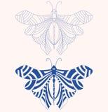 Διανυσματική δερματοστιξία πεταλούδων Στοκ φωτογραφία με δικαίωμα ελεύθερης χρήσης
