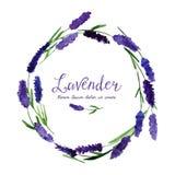 Διανυσματική ευχετήρια κάρτα με lavender watercolor Στοκ φωτογραφία με δικαίωμα ελεύθερης χρήσης