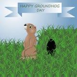 Διανυσματική ημέρα απεικόνισης groundhog ελεύθερη απεικόνιση δικαιώματος