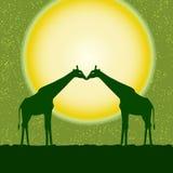 Διανυσματική κάρτα με δύο giraffes Στοκ φωτογραφίες με δικαίωμα ελεύθερης χρήσης