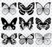 Διανυσματική μακρο συλλογή σκιαγραφιών πεταλούδων Στοκ Φωτογραφία