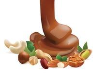 Διανυσματική ρεαλιστική λειωμένη υγρό χύνοντας σοκολάτα και διαφορετικά καρύδια η ανασκόπηση απομόνωσε το λευκό Στοκ Εικόνες