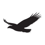 Διανυσματική σκιαγραφία του πουλιού του θηράματος κατά την πτήση τα φτερά που διαδίδονται με διανυσματική απεικόνιση