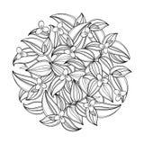 Διανυσματική στρογγυλή ανθοδέσμη με την περίληψη Tradescantia ή το λουλούδι περιπλάνησης Εβραίος Λουλούδι και φύλλο στο Μαύρο που ελεύθερη απεικόνιση δικαιώματος