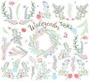 Διανυσματική συλλογή Watercolor floral Στοκ Φωτογραφία