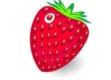 Διανυσματική φράουλα στο άσπρο υπόβαθρο Στοκ Εικόνες