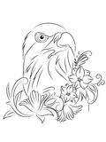 Διανυσματική χρωματίζοντας σελίδα αετών δερματοστιξιών Στοκ Φωτογραφίες