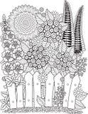 Διανυσματικοί ηλίανθοι doodle Χρωματίζοντας βιβλίο για τον ενήλικο καλοκαίρι κήπων λουλουδιών ανθών _ Στοκ φωτογραφία με δικαίωμα ελεύθερης χρήσης