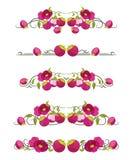 Διανυσματικοί διαιρέτες κειμένων με mangosteen και το λουλούδι στοκ φωτογραφία