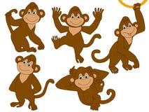 Διανυσματικοί πίθηκοι καθορισμένοι Στοκ Εικόνα