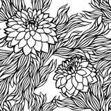 Διανυσματικός άνευ ραφής floral γραπτός μονοχρωματικός σχεδίων ελεύθερη απεικόνιση δικαιώματος