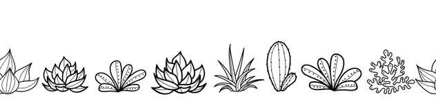 Διανυσματικός γραπτός άνευ ραφής οριζόντιος επαναλαμβάνει τα σύνορα σχεδίων με την ανάπτυξη Succulents και κάκτοι στα δοχεία tren διανυσματική απεικόνιση