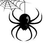 Διανυσματικός Ιστός αραχνών και αράχνη Στοκ Εικόνες