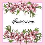 Διανυσματικός κλάδος με τη ροζ κάρτα πρόσκλησης λουλουδιών διανυσματική απεικόνιση