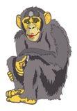 Διανυσματικός πίθηκος διανυσματική απεικόνιση