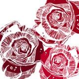 Διανυσματικός πολύχρωμος αυξήθηκε λουλούδια Διανυσματικά τυποποιημένα τριαντάφυλλα διανυσματική απεικόνιση