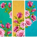 Διανυσματικός ρόδινος αυξήθηκε πλαίσια Σύνολο floral κάθετων εμβλημάτων διανυσματική απεικόνιση