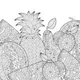 Διανυσματικός συρμένος χέρι ανανάς, καρπούζι, απεικόνιση μήλων για το ενήλικο χρωματίζοντας βιβλίο Ελεύθερο σκίτσο για ενήλικο αν Στοκ Εικόνα