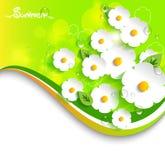 Διανυσματικός floral, θερινό υπόβαθρο σε τρισδιάστατο Στοκ Εικόνα