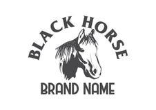 Διανυσματικό άγριο άλογο ελεύθερη απεικόνιση δικαιώματος