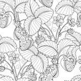 Διανυσματικό άνευ ραφής μονοχρωματικό σχέδιο φρούτων Στοκ Εικόνες