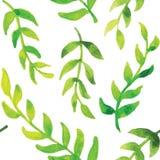 Διανυσματικό άνευ ραφής πράσινο σχέδιο Στοκ Φωτογραφία