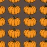 Διανυσματικό άνευ ραφής σχέδιο κολοκύθας Συρμένα χέρι αντικείμενα που απομονώνονται στο πορτοκάλι Φυτική απεικόνιση ύφους κινούμε Στοκ εικόνα με δικαίωμα ελεύθερης χρήσης