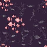 Διανυσματικό άνευ ραφής σχέδιο με τα ριγωτά, κόκκινα και άσπρα ψάρια, θαλάσσια φυτά διανυσματική απεικόνιση