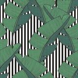 Διανυσματικό άνευ ραφής σχέδιο με τα φύλλα μπανανών για το σχέδιο Στοκ εικόνες με δικαίωμα ελεύθερης χρήσης