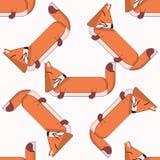 Διανυσματικό άνευ ραφής σχέδιο με τα χαριτωμένα κινούμενα σχέδια foxes5 ελεύθερη απεικόνιση δικαιώματος