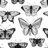 Διανυσματικό άνευ ραφής σχέδιο συρμένων των χέρι γραπτών πεταλούδων ελεύθερη απεικόνιση δικαιώματος