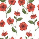 Διανυσματικό άνευ ραφής σχέδιο των κόκκινων hibiscus κλάδων διανυσματική απεικόνιση