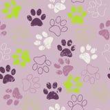 Διανυσματικό άνευ ραφής σχέδιο με τα ίχνη γατών ή σκυλιών Χαριτωμένο colorfu Στοκ φωτογραφίες με δικαίωμα ελεύθερης χρήσης