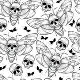 Διανυσματικό άνευ ραφής σχέδιο με τα διαστιγμένα μαύρα atropos σκώρων ή Acherontia γερακιών θανάτου ` s επικεφαλής στο άσπρο υπόβ Στοκ φωτογραφίες με δικαίωμα ελεύθερης χρήσης