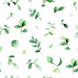 Διανυσματικό άνευ ραφής σχέδιο με τα πράσινα φύλλα που χρωματίζονται με τα watercolors στο άσπρο υπόβαθρο διανυσματική απεικόνιση